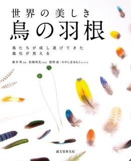 hyoshi2.jpg